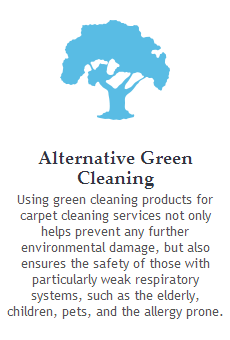 organic green carpet cleaning
